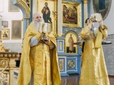 «AGIOS» у иконы Божией Матери «Жировичская»