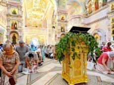 Пятидесятница. День рождения Святой Апостольской Церкви