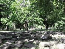 Камни возопиют